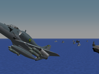 Martins' planes